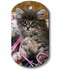 aluminum picture dog tag